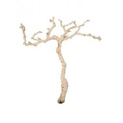 Dekorační dřevo Grapewood 120cm, opískované